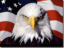 Bald_Eagle_and_flag_United_States_America
